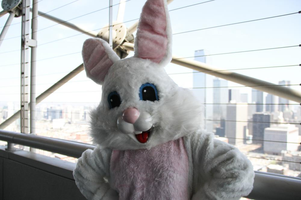 Easter on the GeO-Deck